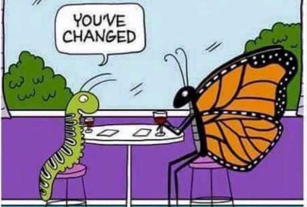 You've changed 🦋🐛 Wednesday Whisper 20/21