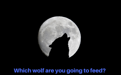 Which wolf are you going to feed? 🐺  Wednesday Whisper 46/19